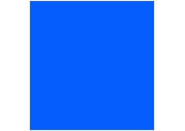 Logo COAR