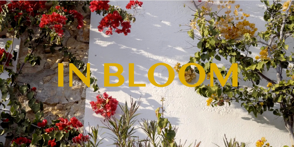 Cover In Bloom