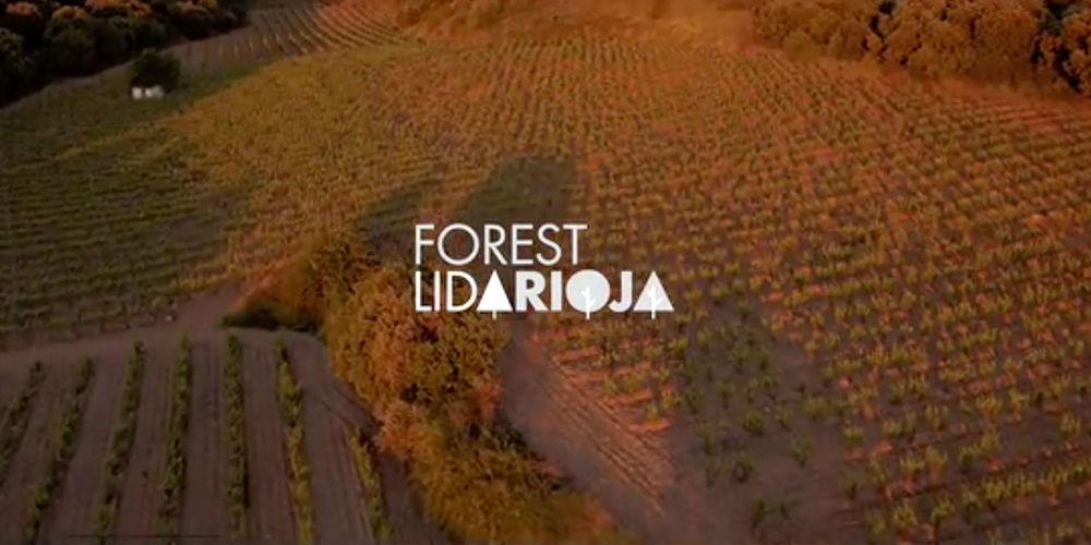 Cover Forest Lida Rioja